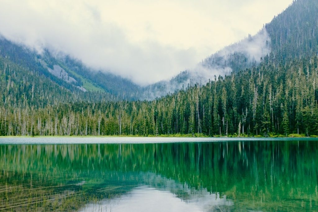 Mountain lake and pine tree forest near Vancouver, BC